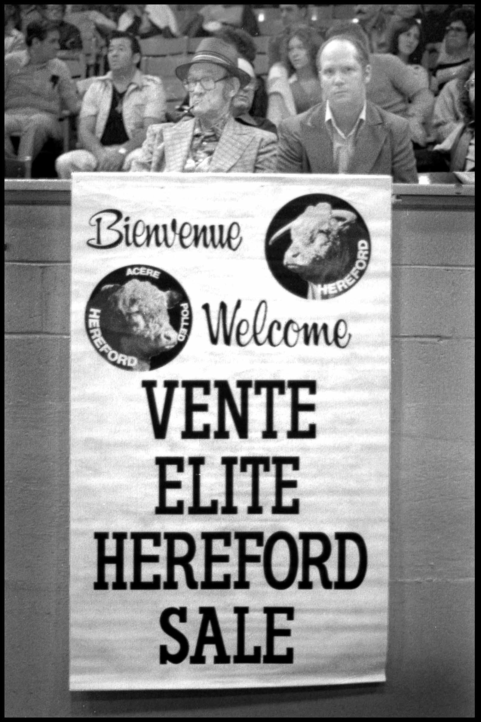 Affiche hereford
