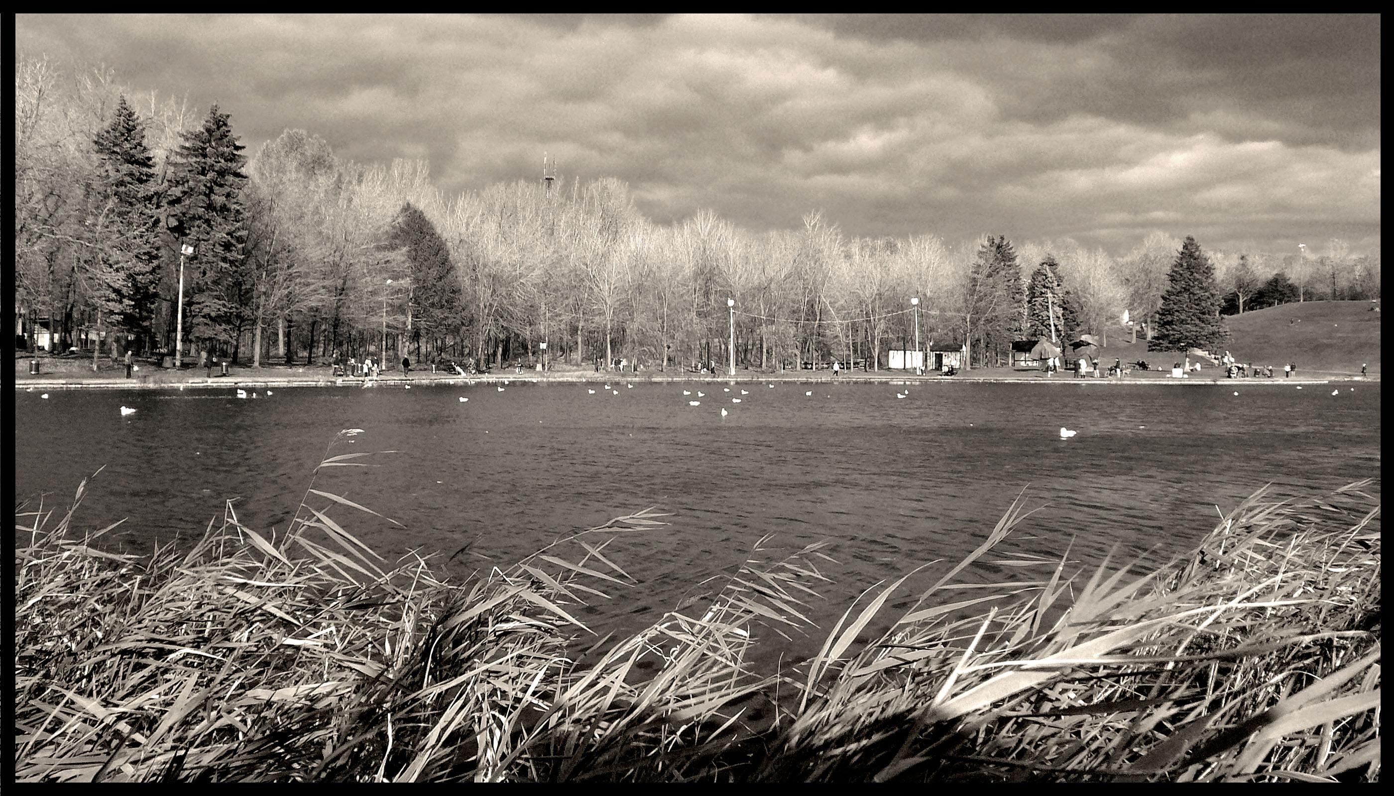 Lac Castors